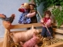 Bei den Schweinchen