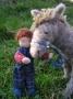 Max mit dem Esel