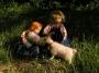 Am Morgen mit der Ziege